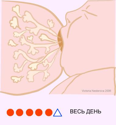 Унеё в груди есть молоко фото 135-741